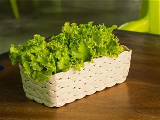Lettuce in basket on wood table