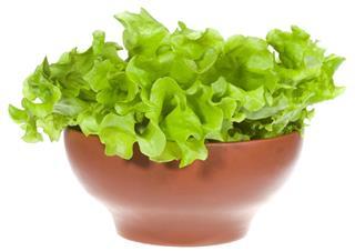 Healthy lettuce salad