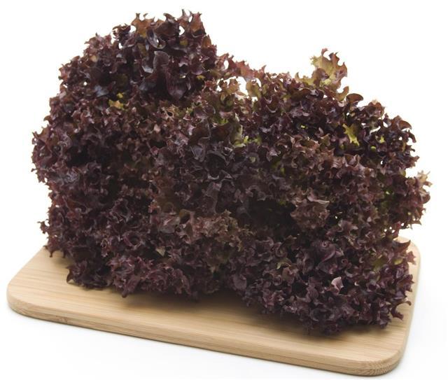 Fresh lettuce in the edge board