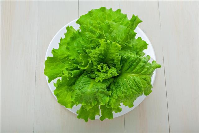 Fresh lettuce on a table