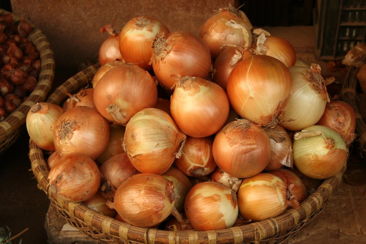 Shallots Vs. Onions