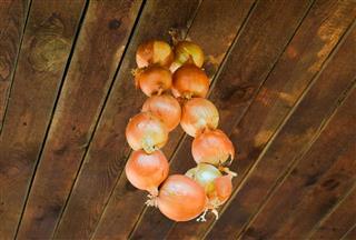 Drying hanging onion bulbs