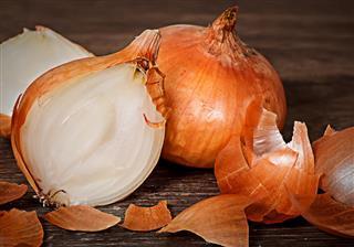 Onion bulbs with husks