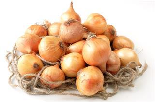 British baby onions on rope nest