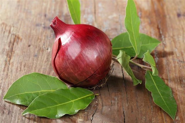 Onion and bay leaf