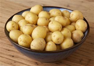 Small bowl of organic honey gold potatoes