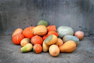 Pumpkins,Vegetable