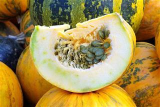 Slice of pumpkin
