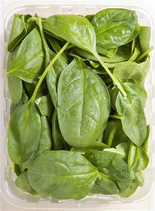nutritional value of vegetables pdf
