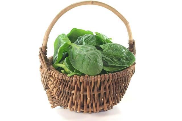 Leaf Spinach
