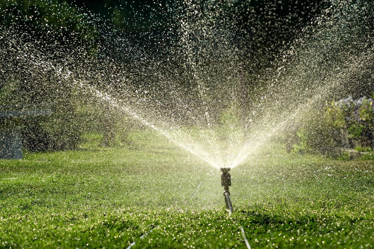 Leaking Sprinkler Head