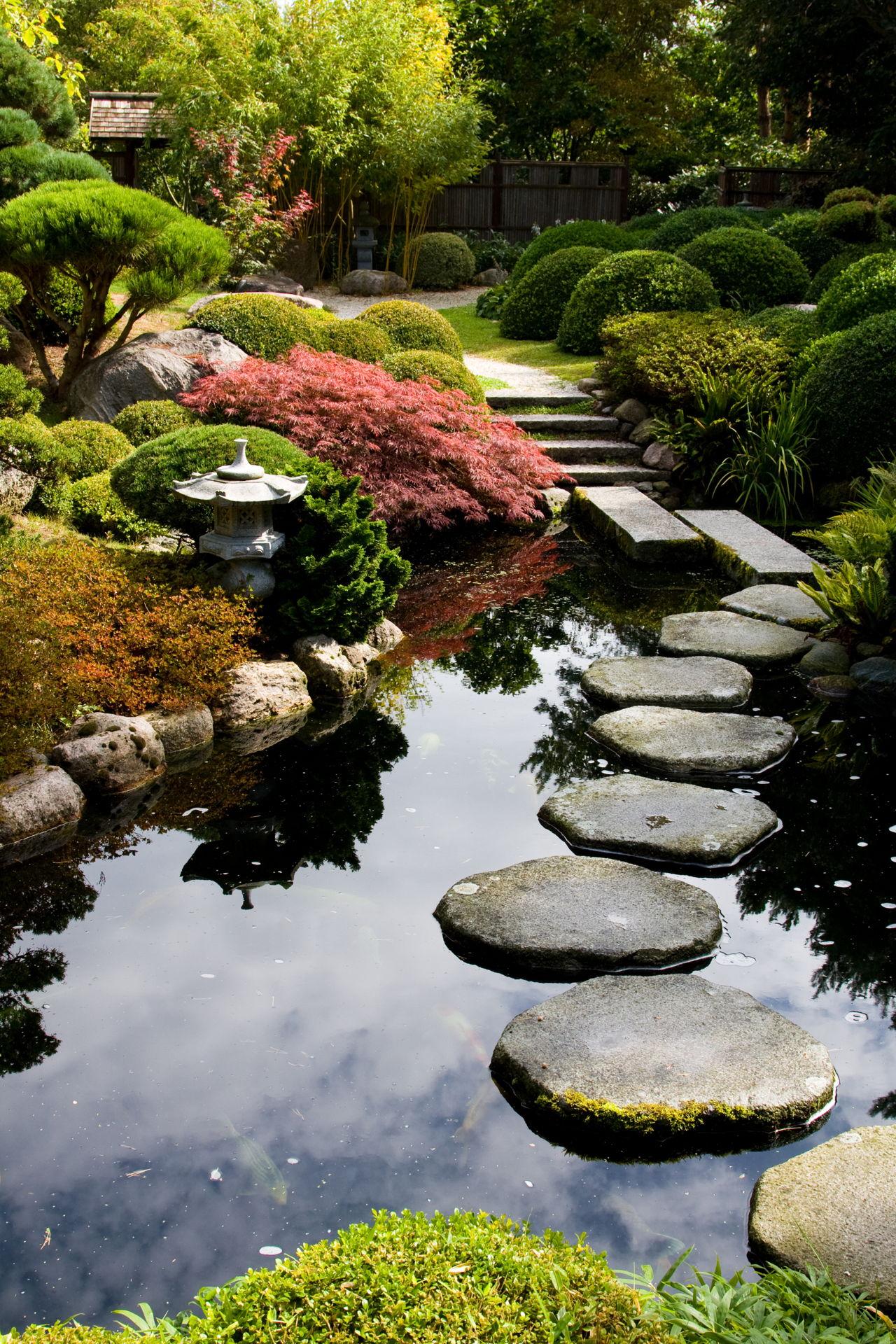 Backyard landscape design stunning backyard landscaping for Help with my garden design
