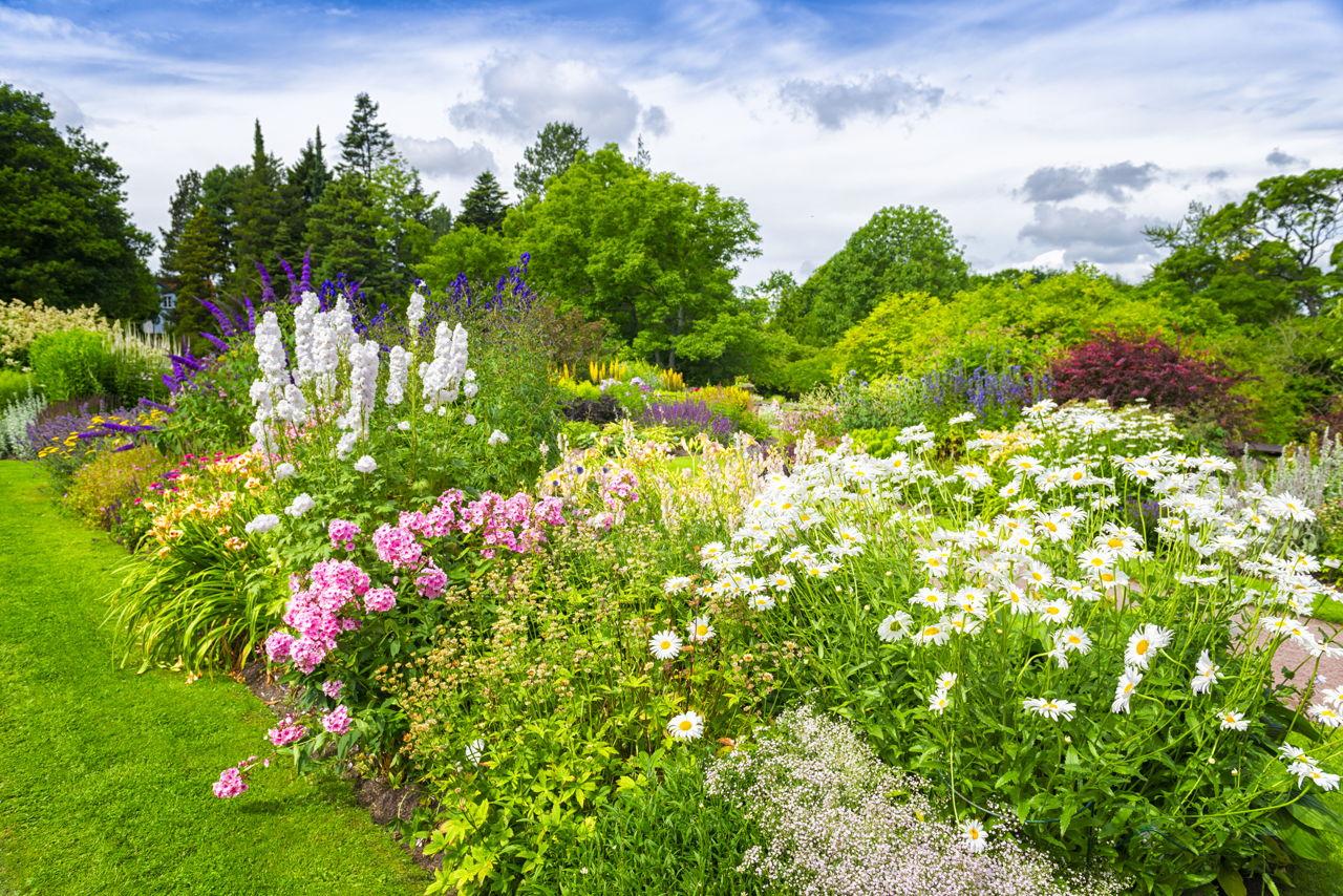 Perennial Flower Bed Designs for a Garden That Resembles ...