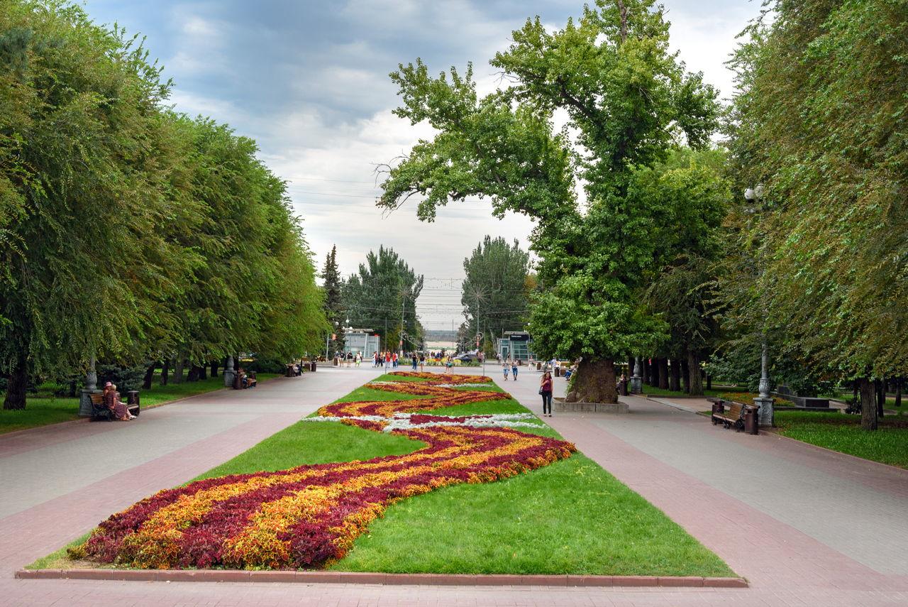 Flower Garden Layout Design Ideas That\'ll Make Your Neighbors Jealous