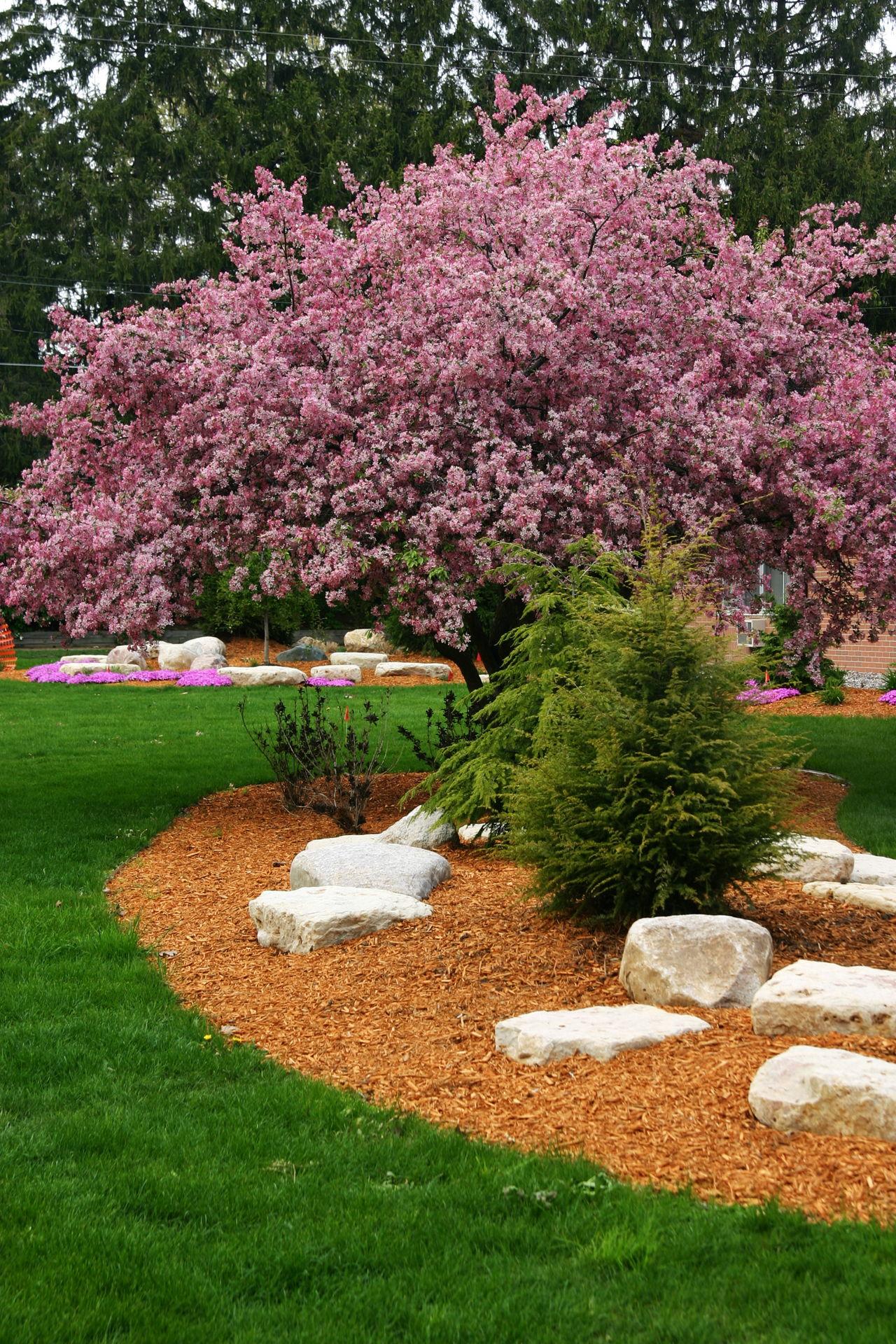 Flower Garden Layout Design Ideas That'll Make Your ...