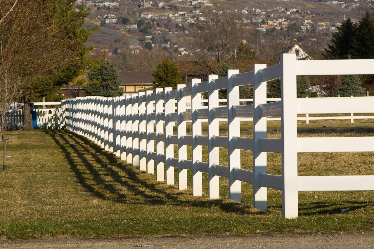 Cedar Fence Cost