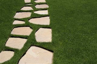 Lawn Path