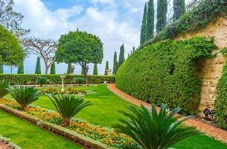 The Scenic Garden