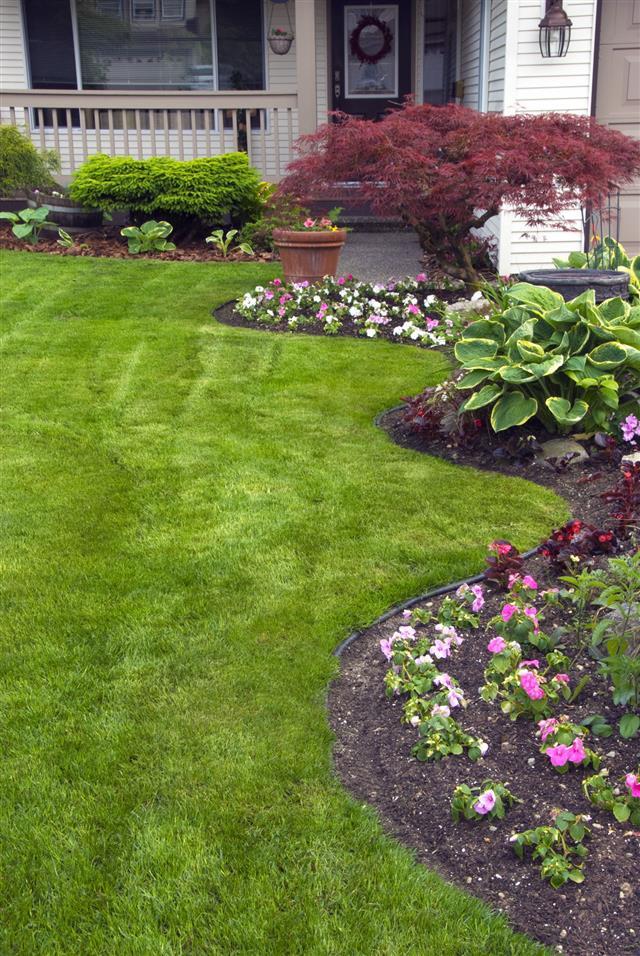 Spring Yard