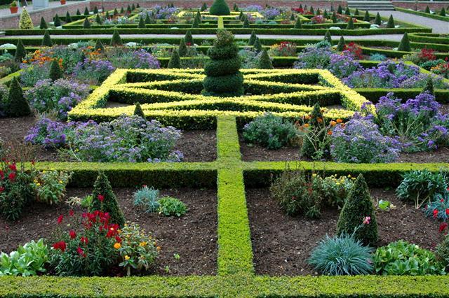 Oramental Landscaped Garden