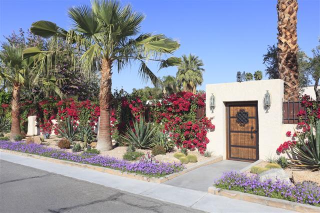 Spectacular Residential Desert Landscaping