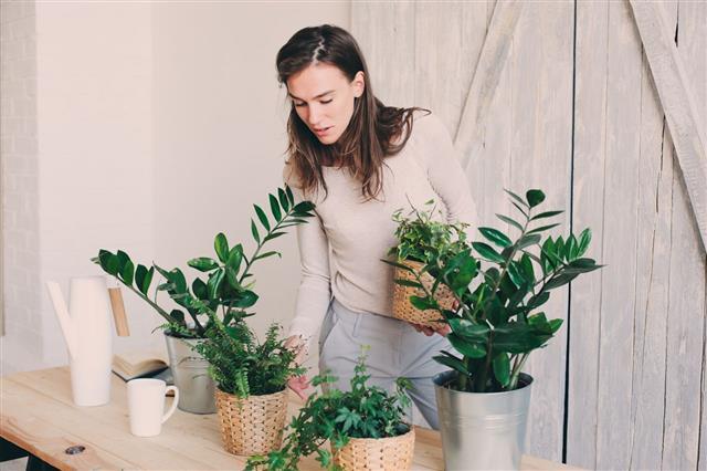Woman Watering Flowerpots