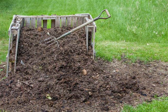 Backyard compost pile
