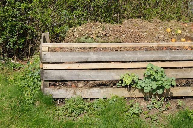 Compost heap in garden