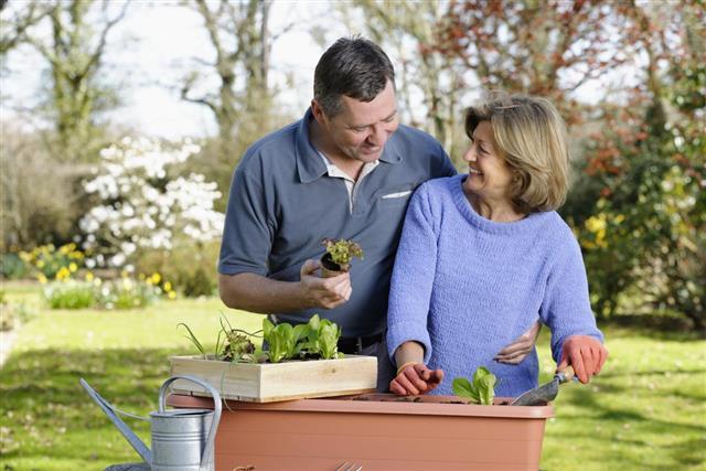 Couple Planting Vegetables