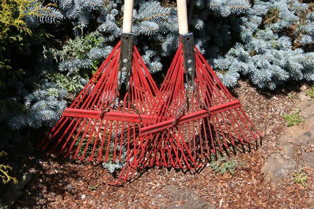 Red Garden Rakes