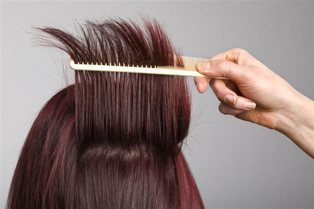 Hair Stylist Comb