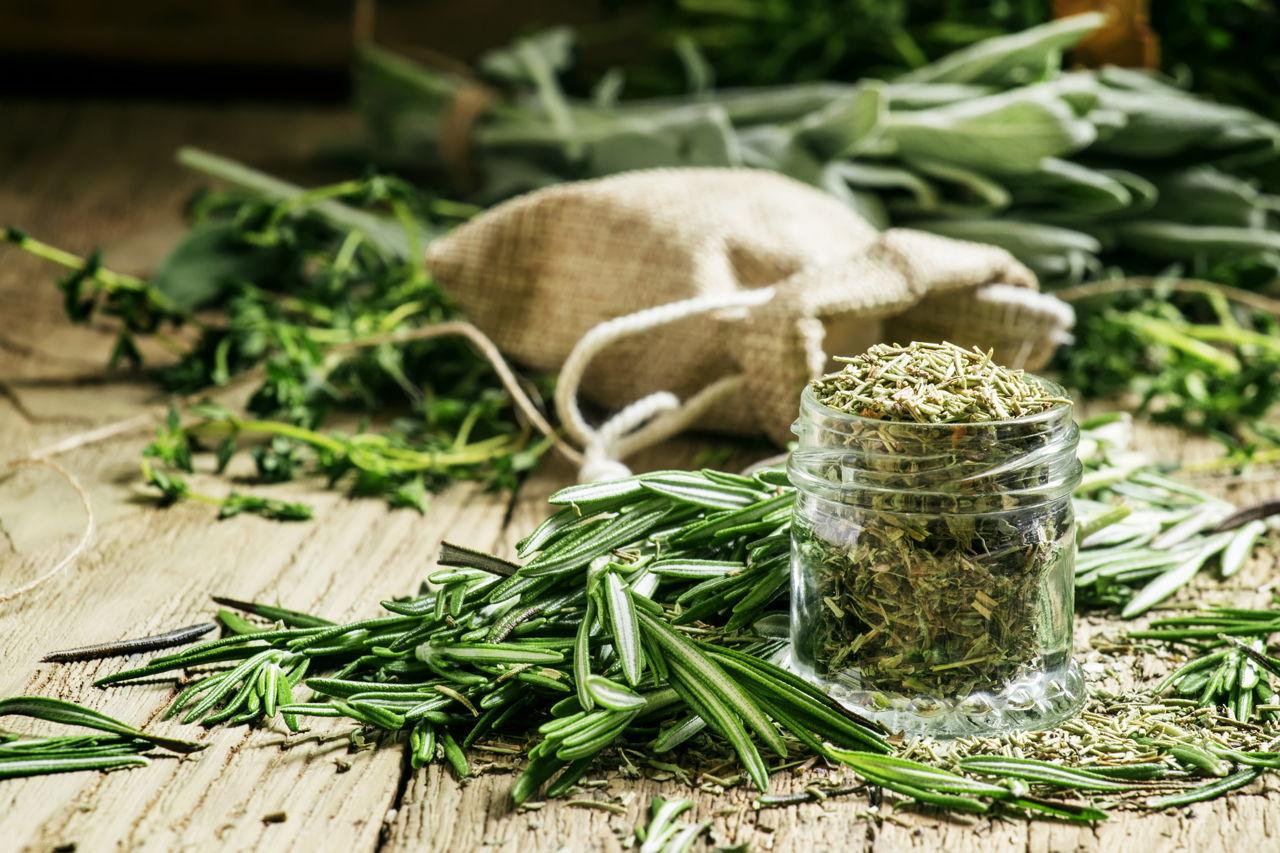 Green Tea Diet Plan