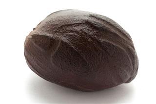 Mature Organic Nutmeg