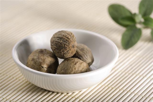 Nutmeg In China Bowl