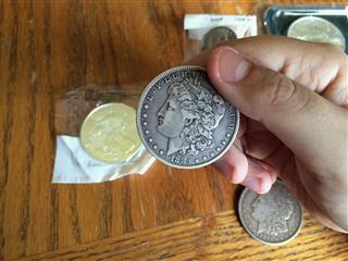 Examining Silver Dollar