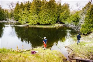 Boys Fishing On A River