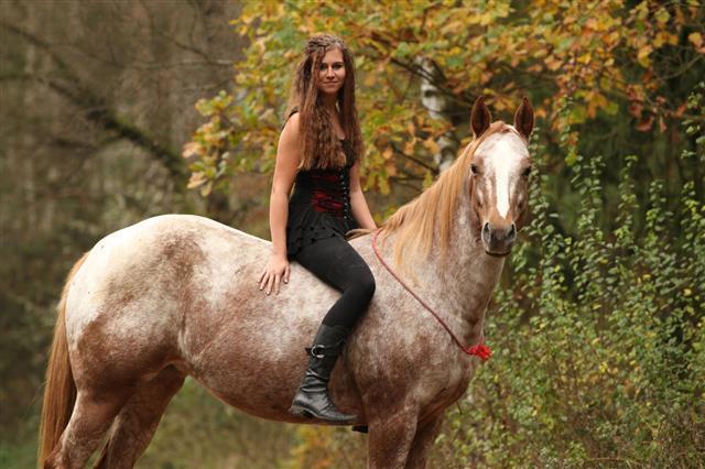 Pretty Girl Riding A Horse