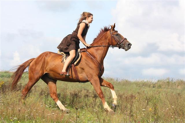 Beautiful Teenage Girl Riding Horse
