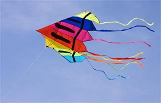 Multicoloured Kite