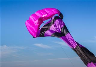 Colorful Purple Kite