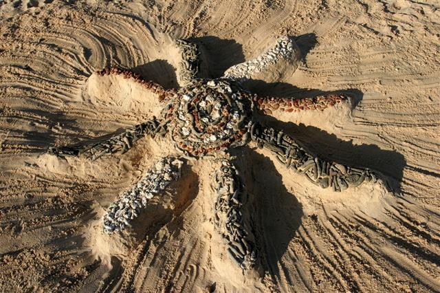Beach Sand Star