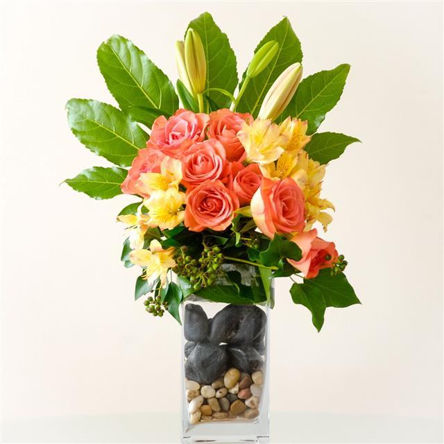 Red Dahlia Flowers In Vase