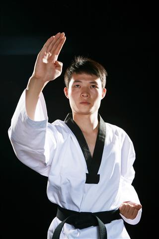 Asian Doing Taekwondo