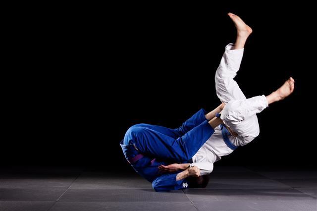 Brazilian Jiujitsu Martial Arts
