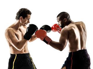 Boxer Kickboxing