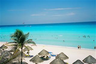 Coral Beach In Mexico