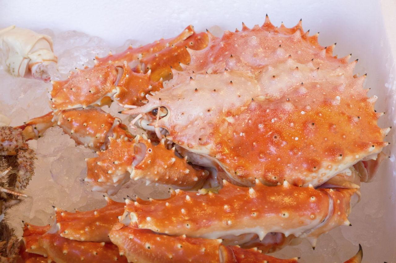Cream Cheese Crab Dip Recipes