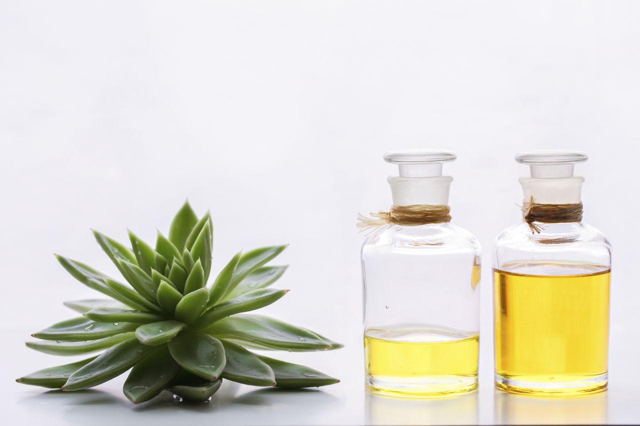 Dry Scalp Causes