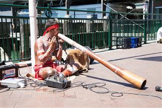 Aborigin Performing Music At Sydney Harbour