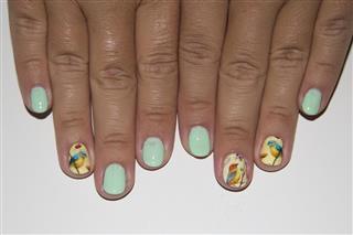 Manicure - Nail polish